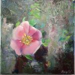 burren-flowers-4